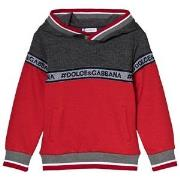 Dolce & Gabbana Red and Grey Logo Hoodie 2 years